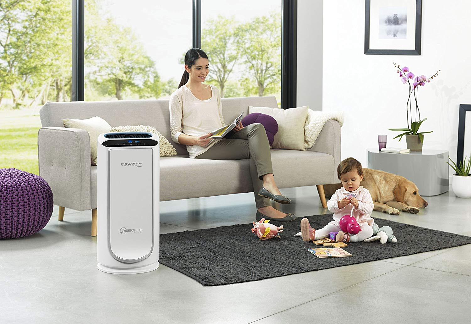Test : le purificateur d'air de Rowenta Intense Pure Air