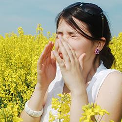 Les ioniseurs pour soulager les allergies au pollen