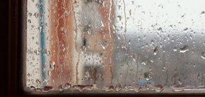 D'où provient l'humidité de votre intérieur ?